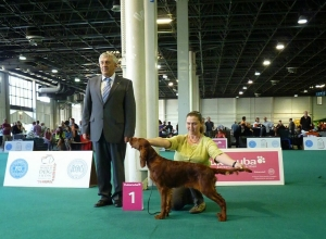 World Dog Show 18.05.2013 Budapeszt KL.Baby WO.I Best Minor Puppy