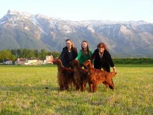World Dog Show Salzburg 18.05.2012